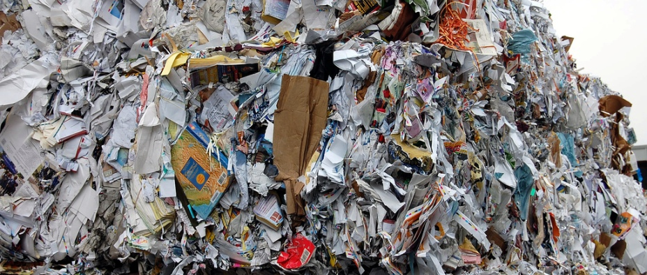 Paper And Carboard Waste