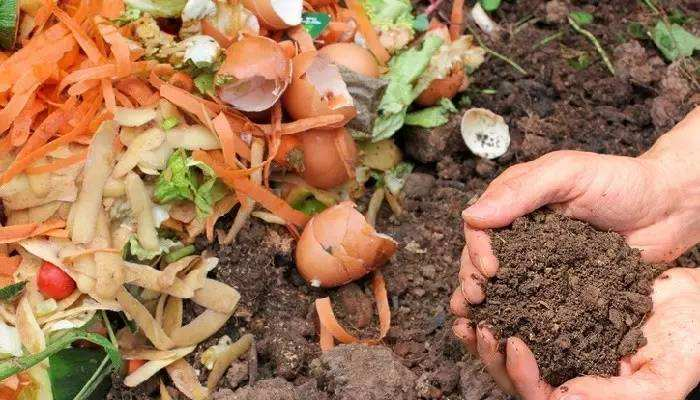 Organic Waste Convert To Fertilizer